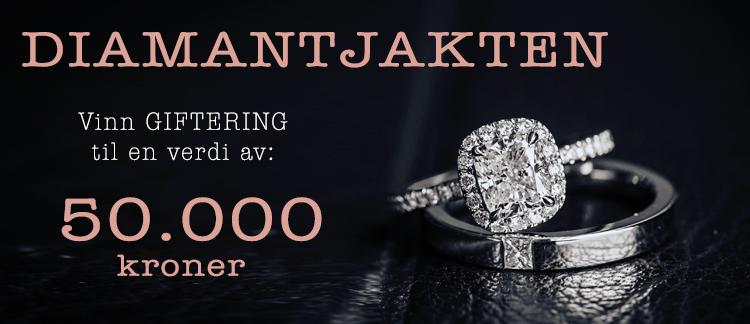 Diamantjakten-16-NO-2